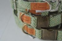 Green  Harris Tweed Pin Buckle Dog Collar
